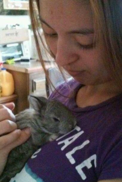 ¡Conejito bebé a la vista! ¿No es tierna la imagen de @wiishiingstar?