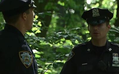 'Nueva York en un Minuto': investigan las causas de la muerte de un jove...