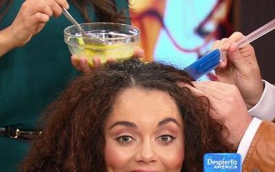 Mira las mascarillas para el pelo que puedes hacerte en casa