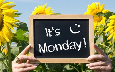 La mayoría de las personas literalmente detestamos los lunes y lo...