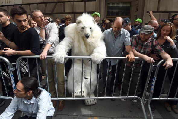 Un hombre vestido como un oso polar tomó parte en las manifestaciones.