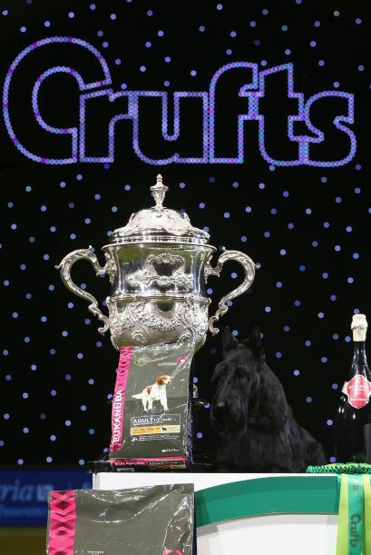 Fue Rebecca Cross quien guió al can a la victoria.