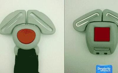 Cinturones de seguridad infantiles son reemplazados por nuevos