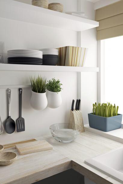 Las plantas y flores son indicadores de un diseño actual y en línea con...
