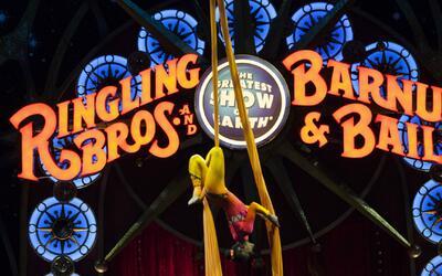 Circo Ringling Bros. and Barnum & Bailey anuncia cierre tras 146 años en...