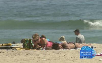 La calidad del agua no es tan segura en algunas playas