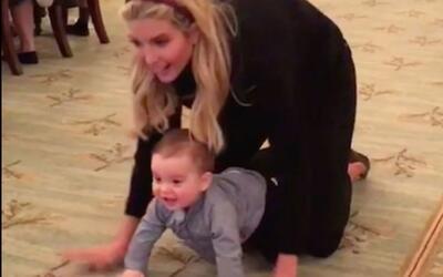Un bebé gateando en la Casa Blanca y la posibilidad de una nueva mascota...