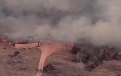 Recomendaciones para prevenir incendios forestales
