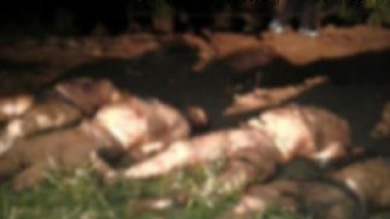 Al menos 31 cuerpos fueron exhumados de una fosa clandestina localizada...