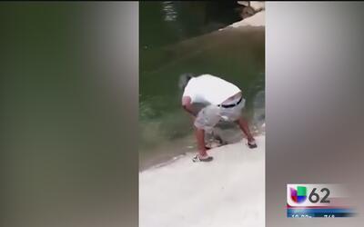 Hombre de Austin enfrenta cargos de crueldad animal por golpear y asesin...