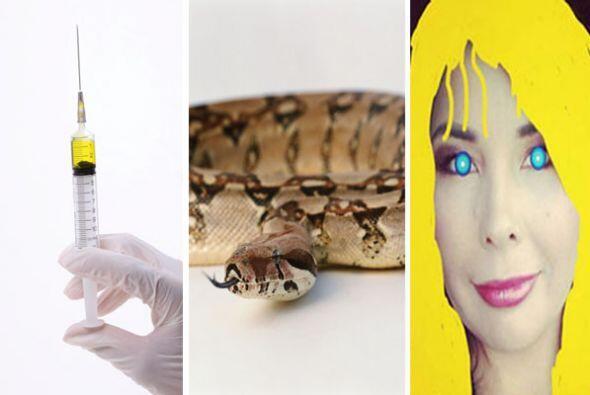 Desde una casa repleta de serpientes, la nueva campaña migratoria...
