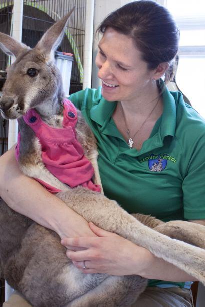 Julia asegura que llevar a su canguro a las clases es de gran ayuda ya q...