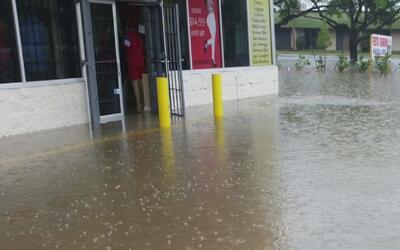 Diversos establecimientos resultaron seriamente afectados por las inunda...
