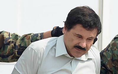 Senador Ted Cruz propone utilizar dinero confiscado a 'El Chapo' Guzmán...