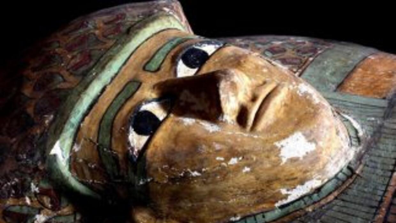 Fue encontrada dentro de un sarcófago de madera y se encuentra en muy bu...