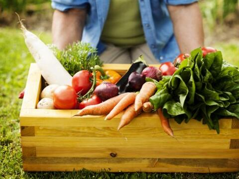 Hay algunos alimentos que además de ricos son nutritivos y que pueden es...
