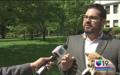 Propuesta de ley para venta de mascotas
