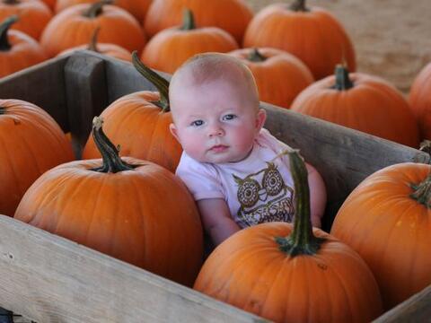 Para aquellos que creen que Halloween personifíca sólo lo diabólico, aqu...