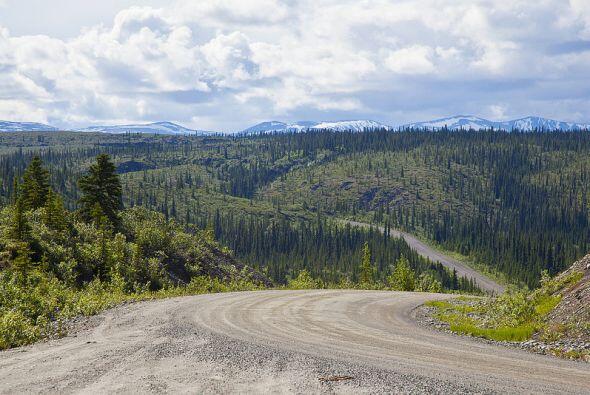 Denali Highway, Alaska  (Foto: Tom Roche)