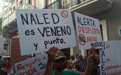 Protestan en San Juan en contra del uso del Naled en la fumigación por z...