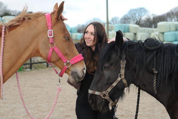 Los traumas que los caballos tienen para saltar o correr también...