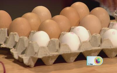 Avicultores han tenido que botar miles de huevos locales