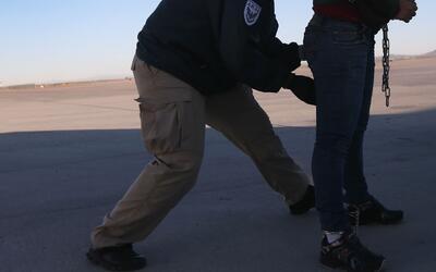 ¿Qué debe hacer una persona para proteger a sus hijos en caso de arresto...