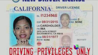 Las licencias para indocumentados en California podrían demorarse