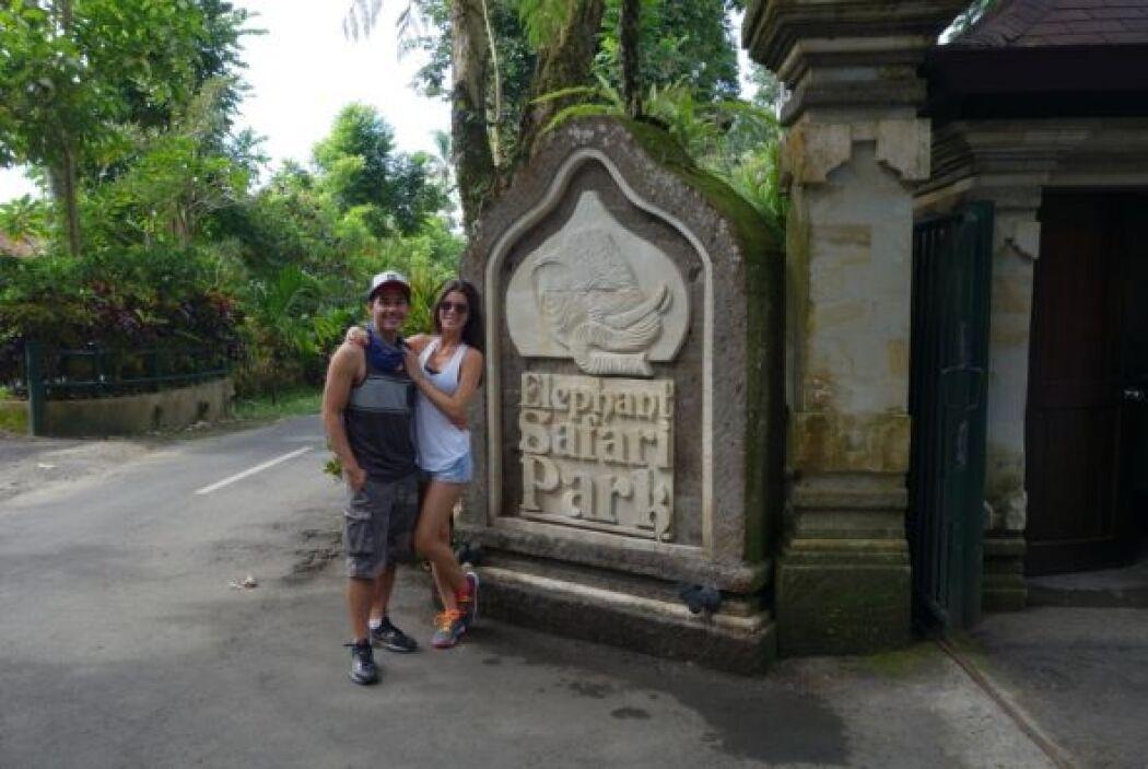 Otra de las atracciones que visitaron fue el Elephant Safari Park.