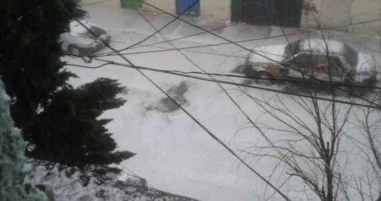 También se cayeron 10 árboles. Imagen tomada de Twitter.