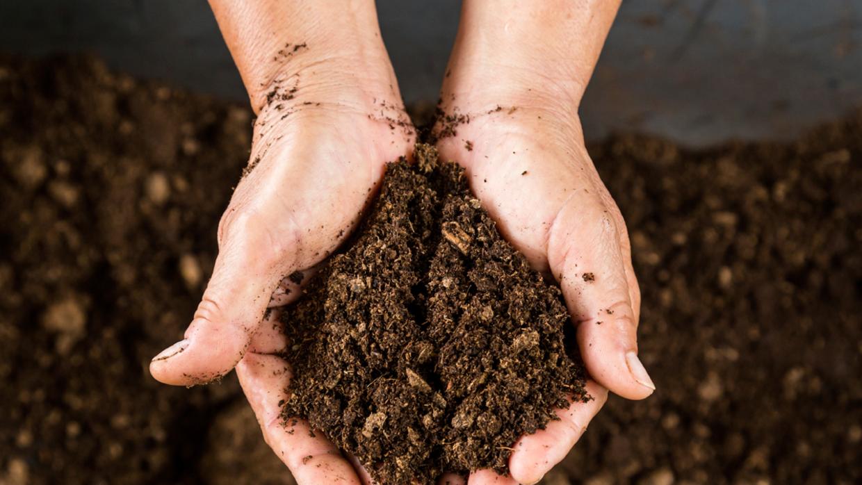 La tierra en contacto con el aire es la zona efectiva para remover quími...
