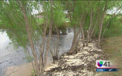 Derrame de petróleo en Lytle, Texas