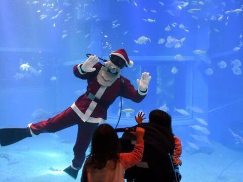 El tiempo de paz y  amor llega con la Navidad y Santa Claus no pod&iacut...