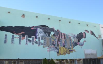 Obra de Malakkai y Arturo Damasco en el edificio del FONART.