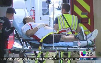 Camioneta choca contra un oso y deja tres personas muertas y varios heridos