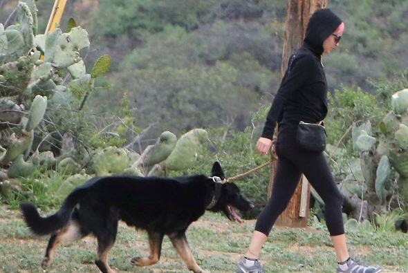 Mientras tanto, Iro seguía disfrutando de la caminata con sus ami...