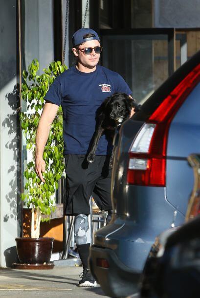 Adoptaron a su mascota en un refugio canino en Tailwaggers, Los Á...