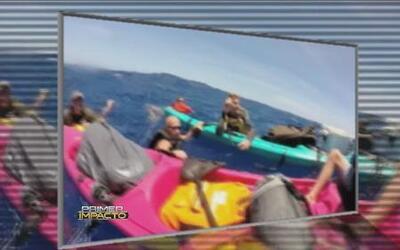 Rescate de Impacto en Hawaii para unos jóvenes