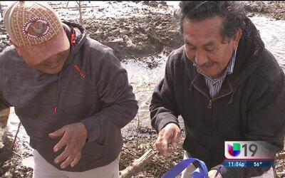 Campesinos del condado San Joaquín sufren por lluvias y temen deportaciones