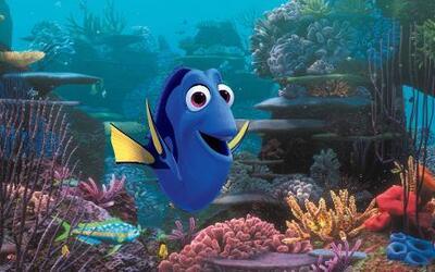 Esta imagen dada a conocer por  Disney nuestra el personaje Dory de la p...