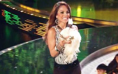 Yesenia Hernández también llegó con una exótica ave