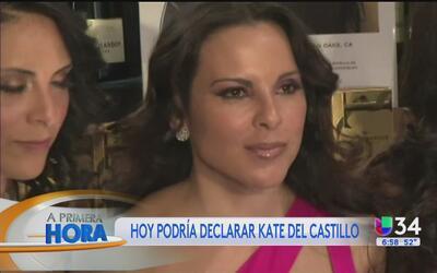 """Kate del Castillo, ¿debe dar explicaciones sobre """"El Chapo""""?"""