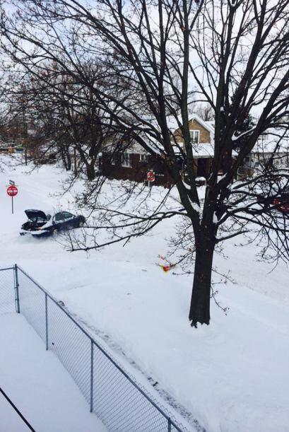 Esta imagen fue tomada por Vivi Landa Velasquez, desde Detroit, Michigan...
