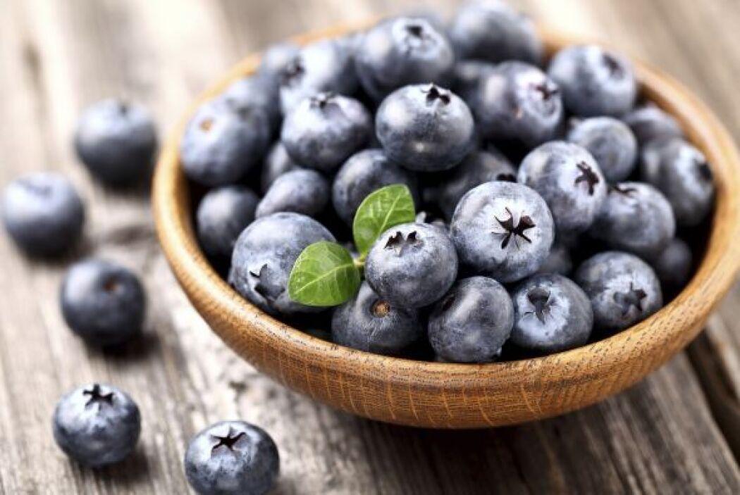 También se les puede dar un poco de 'blueberries' a los perritos con cán...