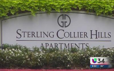 Vandalizan comunidad de apartamentos
