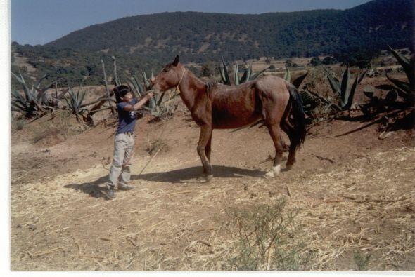 Cada año iba a Michoacán de vacaciones, ahí aprendió a montar a Caballo.