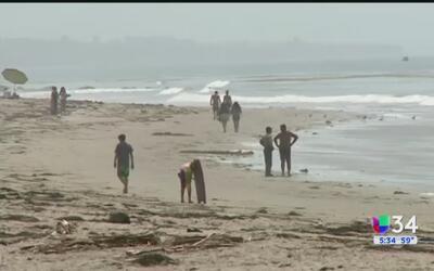 ¿Cuáles son las playas más contaminadas de California?