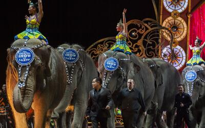 Ringling Bros. y Barnum&Bailey se despiden de sus elefantes