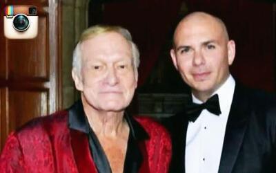 Pitbull atrapado en la Mansión de Playboy