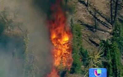 Enorme incendio forestal arrasa con alrededor de 200 casas